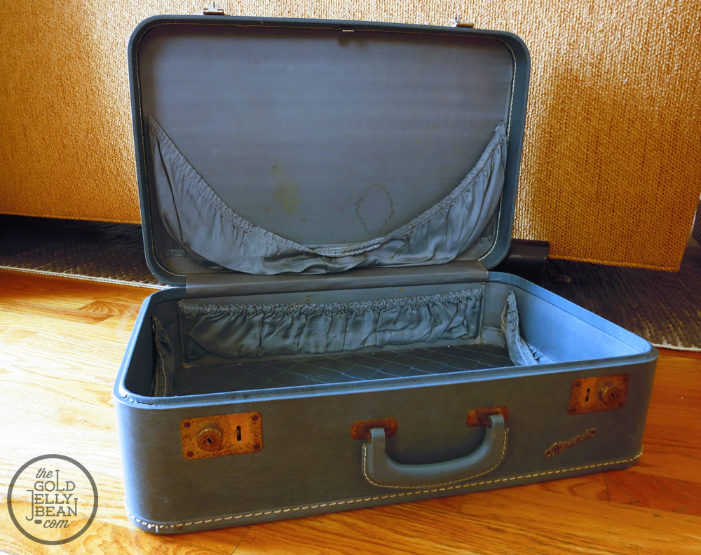 DIY Vintage Suitcase Dog Bed | The Gold Jellybean