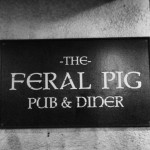 The Feral Pig